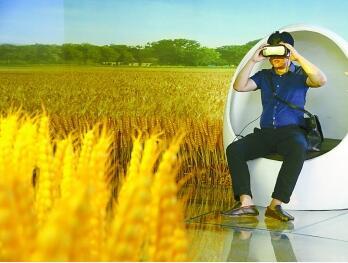 河南温县小麦博物馆用VR设备展示农耕文明