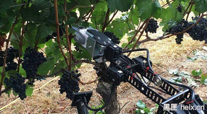 机器人已经和人类抢饭碗了,VR+机器人这还得了?