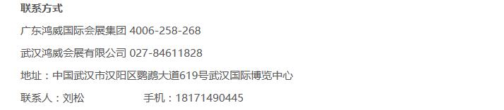 2018第五届中国(武汉)国际电玩及游艺展览会