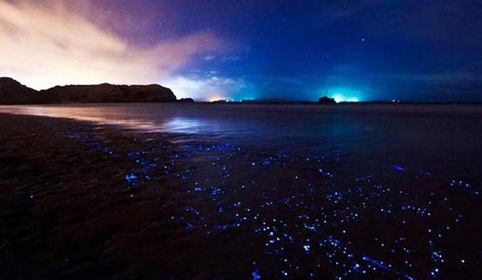 国际旅游岛魅力无限,平潭6月海洋盛会吸引全球目光